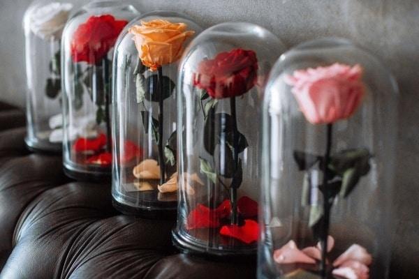 Вечная роза со скидкой и по промокоду в FairyRose.ru